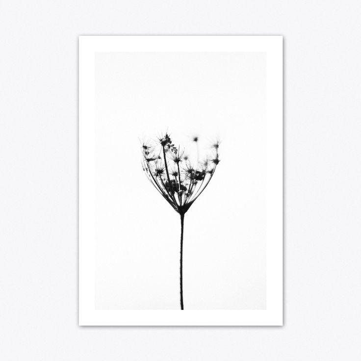 Dandelion Print, Dandelion Art, Nature Print, Nature Wall Art, Flower Print, Flower Art, Botanical Print, Minimalist Print, Minimalist Art #homedecorideas #homedecoronabudget #homedecordiy #homedecorideasmodern #homeoffice #homedecor #homeideas #wallart #walldecor #wallartdiy #art #print #digital #natureprint #dandelionprint #dandelionart #dandelionprintable #flowerprint #flowerart