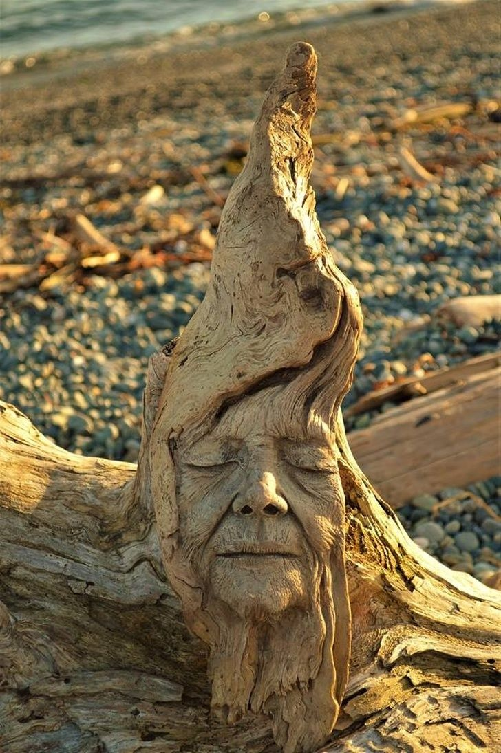 A Canadian Artist Makes Driftwood Sculptures That Are So Mesmerizing We Could Look At Them All Day In 2020 Driftwood Sculpture Wood Carving Art Sculpture