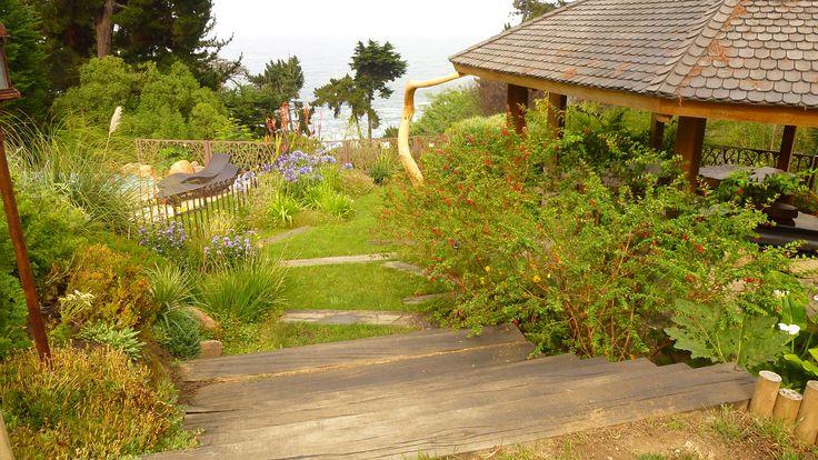 Jardín El Molle, Zapallar 2013_ paisajista Catherine Bonnemaison