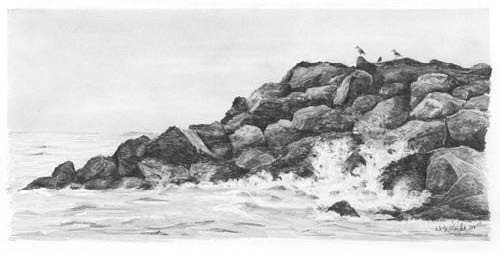 How to Draw Water in Pencil ~~~http://www.artinstructionblog.com/how-to-draw-water-in-pencil#