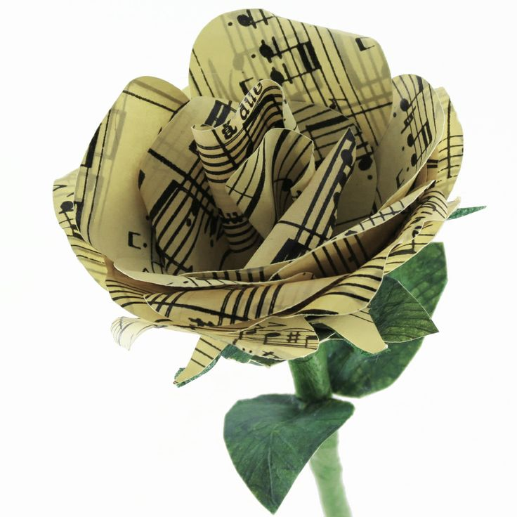 A rose sings a rose plays a rose - #paper #flower #flowers #paperflowers #rose #music #musicpaper