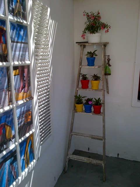 Old ladder for a dull corner!