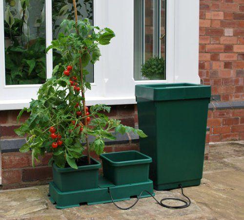 Easy2Grow 2 pot Hydroponic starter kit Autopot https://www.amazon.co.uk/dp/B00139NDWE/ref=cm_sw_r_pi_dp_d1NJxbB1VMAQV