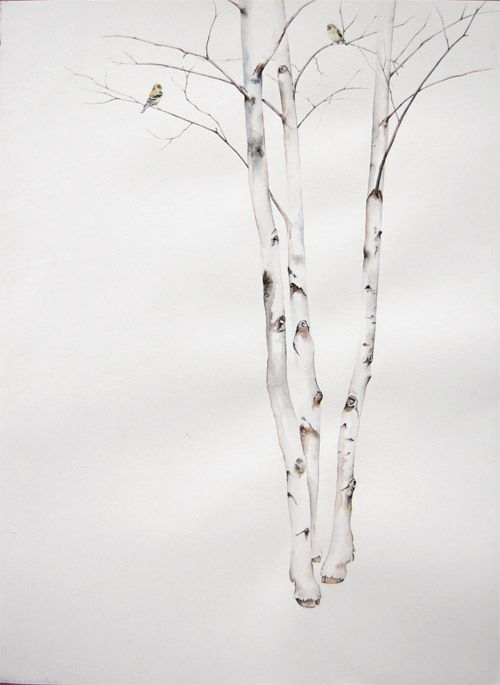 Pix For > Birch Tree Drawing Simple