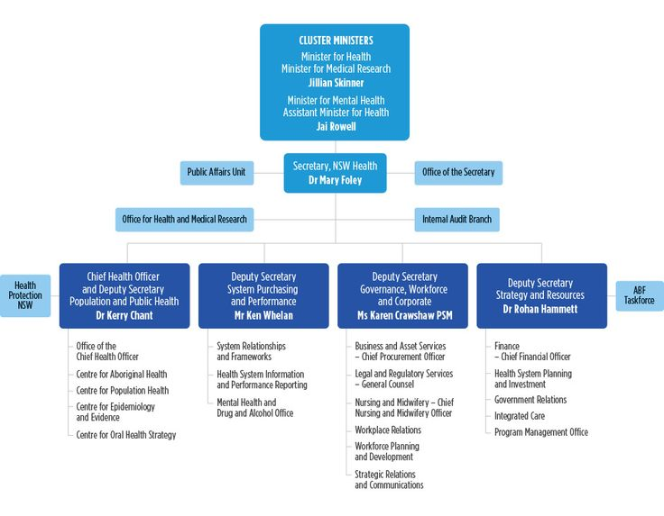 Our Organisation Chart - Ministry of Health