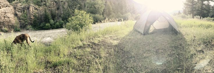 Clearwater Campground - Cody WY #camping #hiking #outdoors #tent #outdoor #caravan #campsite #travel #fishing #survival #marmot http://bit.ly/2t3jDNw