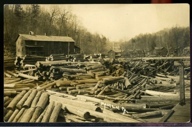 Rppc Saw Mill Logging Nebraska Pa Ghost Town Forest County Real Photo Postcard Ebay Forest County Wellsboro Log Cabin