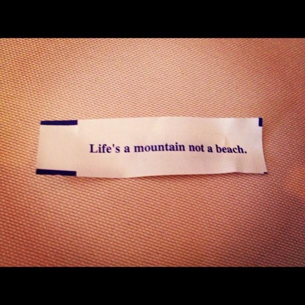 lifes a mountain not a beach: Beaches, Mountain, Wise, Quotess 3, Wisdom, Lifes, Motif