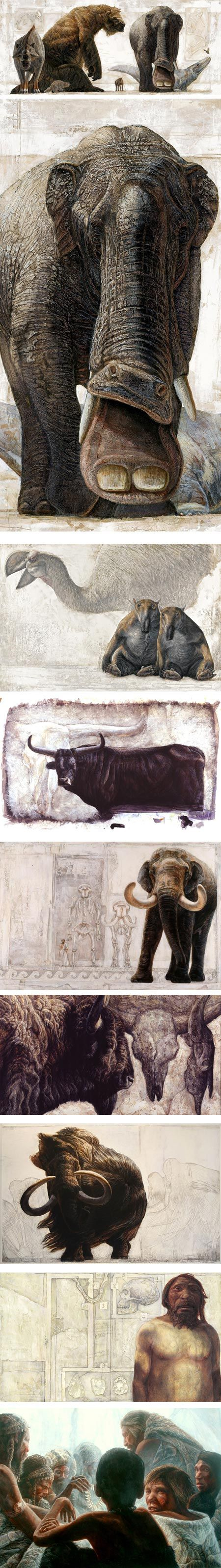 Depictions of prehistoric animals by Dutch brothers Alfons and Adrie Kennis. Beautiful textures, shapes, backgrounds.