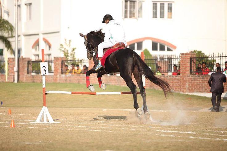 Horse Riding in Boarding School  Dehradun,Uttarakhand,INDIA.