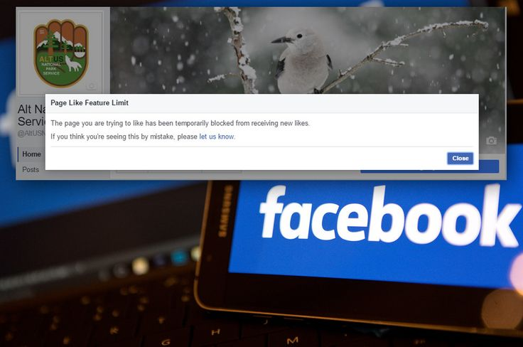 A conservative page owner said three posts disappeared, and there have been temporary bans imposed on other pages. Facebook said it was the result of errors by its automated systems.