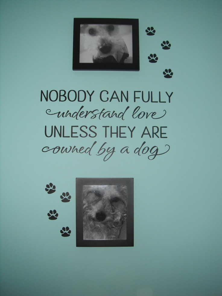Are you a pet lover?  Simply Said has beautiful designs to show off your furry family members!