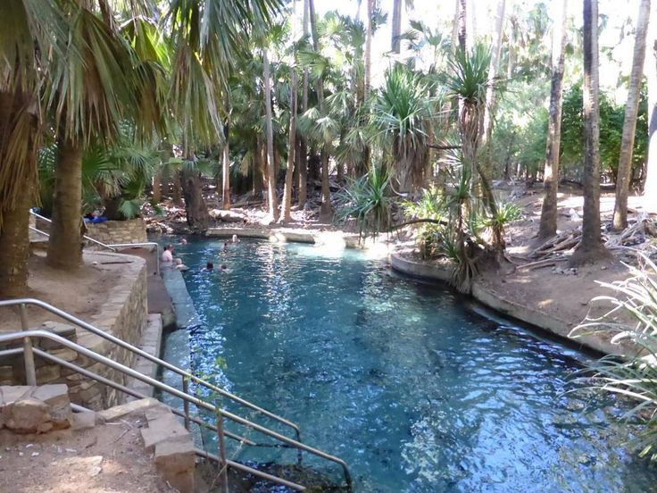 Another one for your bucket list Rainbow Springs Thermal Pool at Mataranka NT.  See more visit http://ift.tt/2laekVA  #rainbowspringsthermalpool #mataranka #nt #water #swimming #beautiful #hot #outdoors #outback #river #caravan #roadtrip