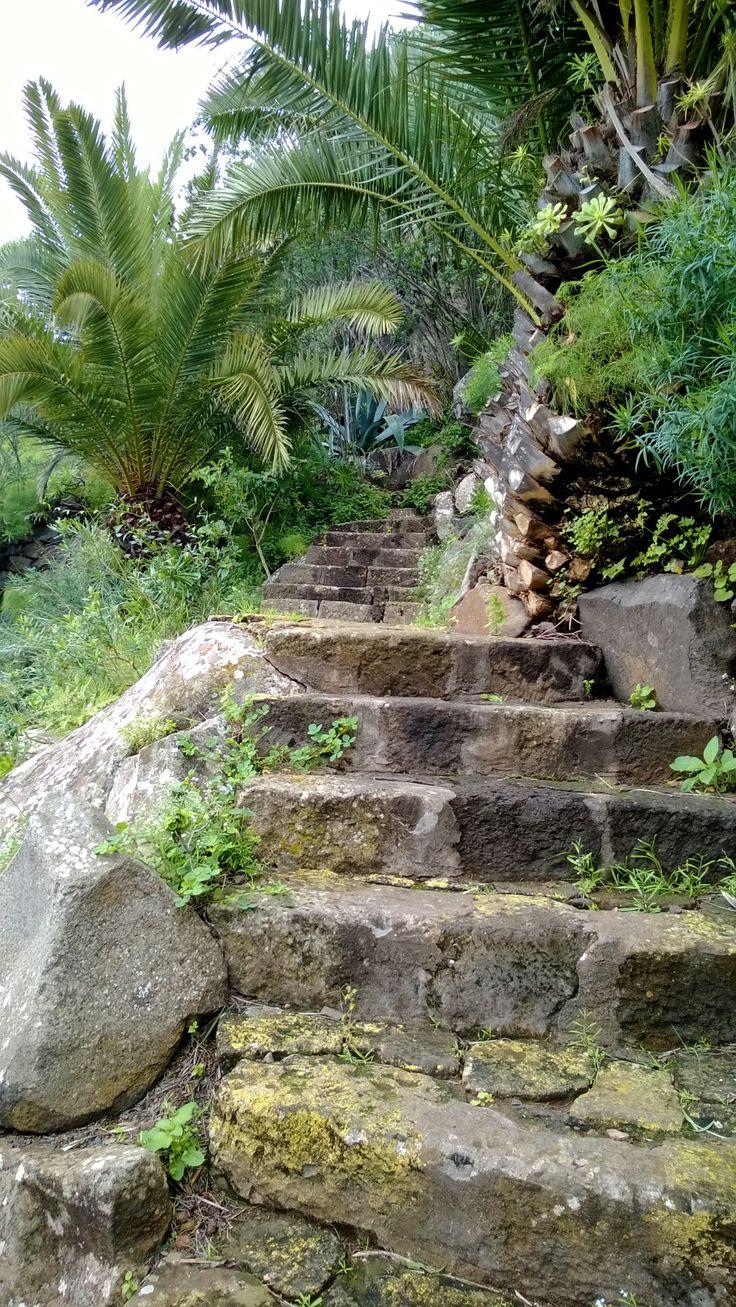 Jardin Canario, Gran Canaria