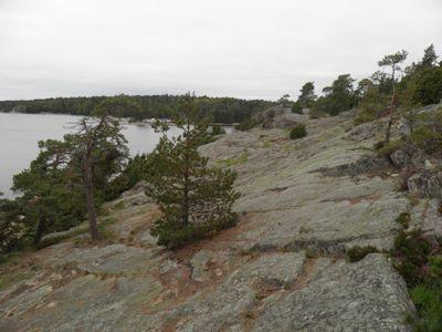 Björnö naturreservat ligger längst ut på Ingarö i Värmdö kommun. Reservatet är av typisk skärgårdsnatur och skogarna består mest av hällmarkstallskog.   Vi parkerade bilen på den stora parkeringen och plockade upp boken för att följa i Karins spår vilket ledde oss direkt ut mot klipporna. Här tog vi dagens första catch bland klipporna.