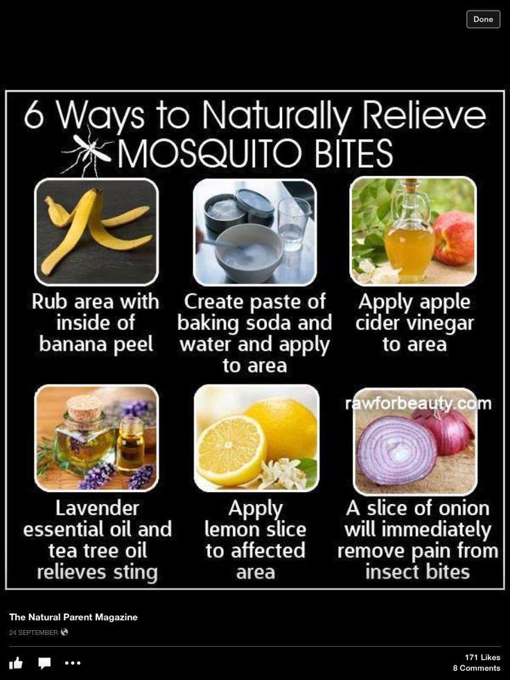 Natural Mosquito Bite Relief