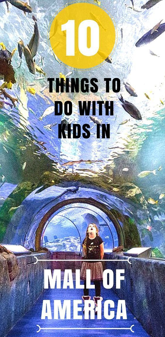 Best MinneapolisSt Paul With Kids Images On Pinterest Twin - 10 things to see and do in minneapolis saint paul