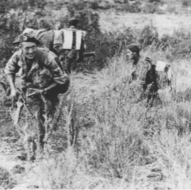 1 REP Algérie -Paras accrochés se préparant à la riposte. A noter sur leurs dos les dossards air-sol