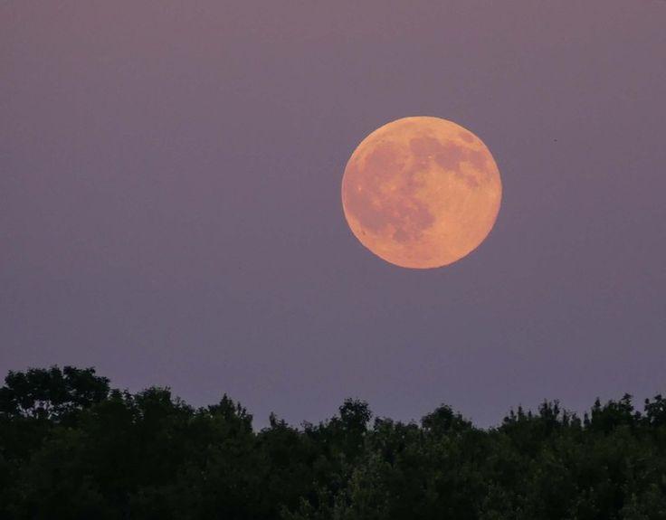 July s Full Buck Moon