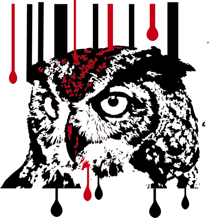 illustrator owl effect - AstridtenBosch Art https://www.facebook.com/pages/AstridtenBosch-Art/562052023904627?ref=aymt_homepage_panel