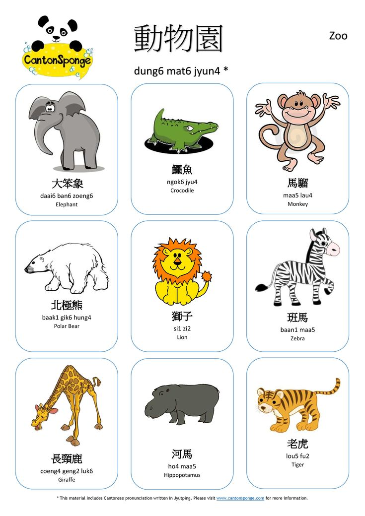 Learn Chinese Characters Fast and Fun - YouTube