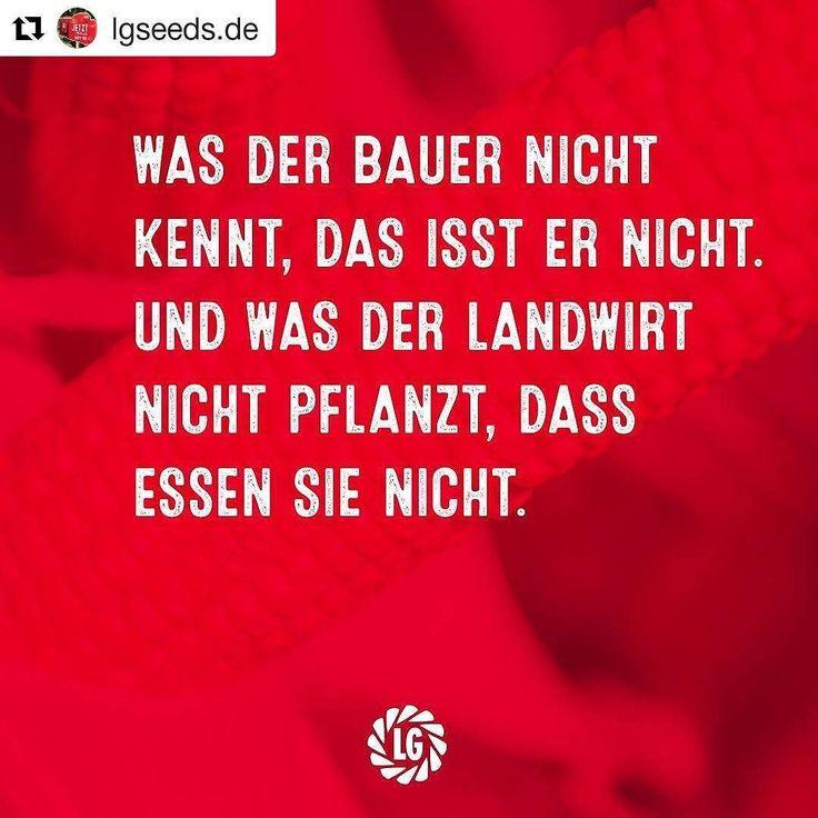 #Farming #farmer #landwirt #danke #Verkaufe1s #ernte #essen  #Repost @lgseeds.de .................... Was der #Bauer nicht kennt ... ganz so einfach ist es nicht.  Unsere Landwirte müssen heute ganz schön flexibel sein und sie setzen sich unentwegt dafür ein unser aller Essen zu sichern. Danke #Bauern Liebe Grüße #LG #Limagrain #Landwirtschaft #Saatgut #SchoenesWochenende #4t