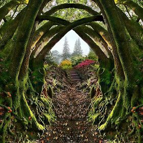 Secret garden  Portland Oregon :)