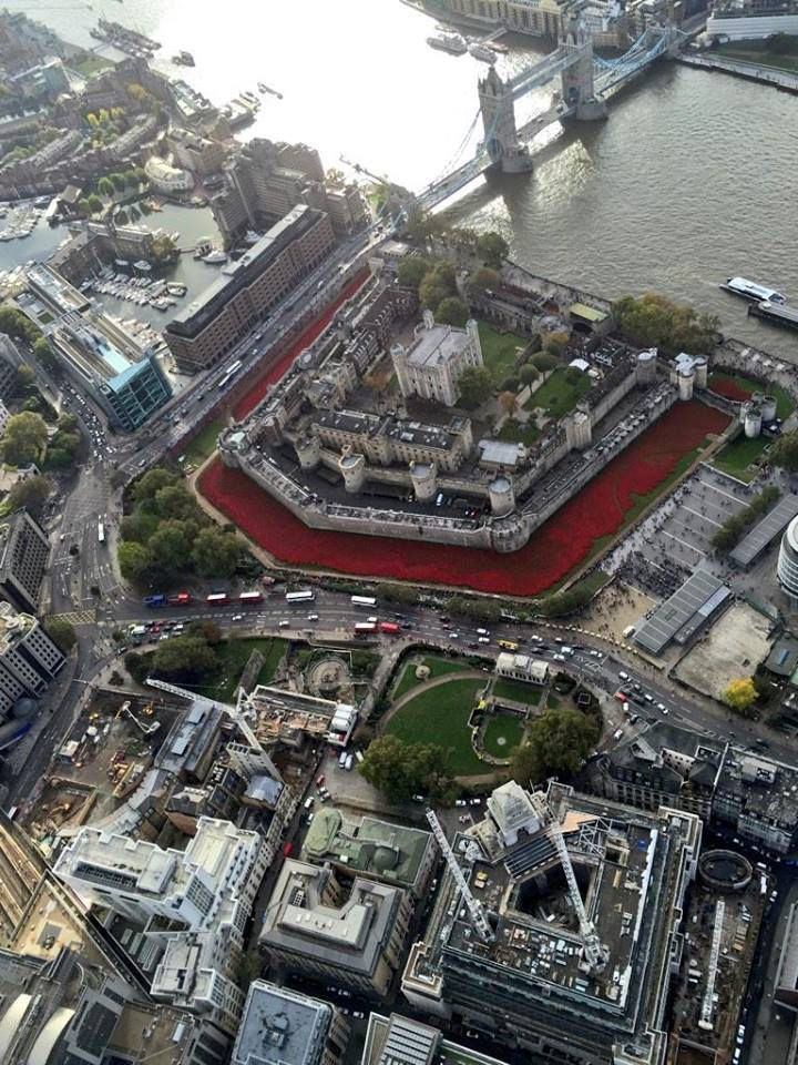Tower of London Sea of Poppies from above... every poppy represents the life of a British or Commonwealth serviceman lost in WW1... a sad, poignant reminder of the price of liberty.. It's an amazing sight if you can go see it x