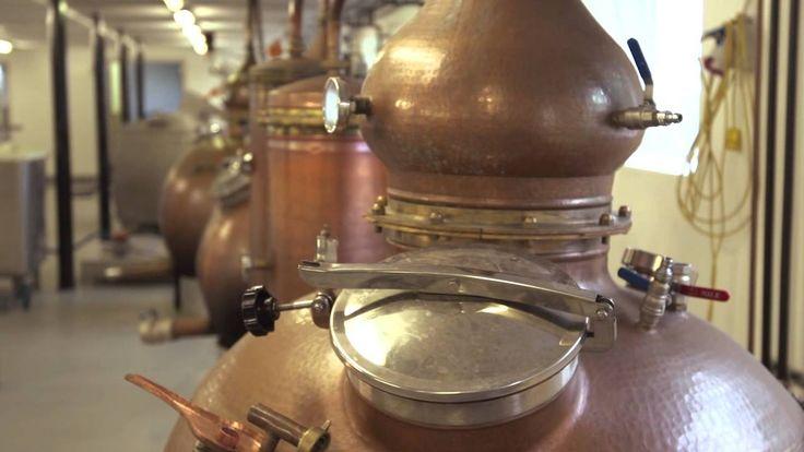 Stauning Whisky producerer og sælger whisky. Virksomheden er med i projekt Fremtidens Industrielle Forretningsmodeller for at få strategisk sparring til at o...