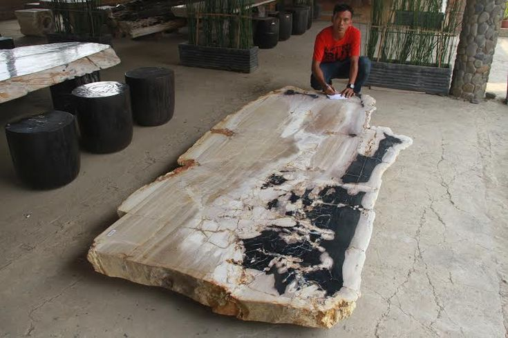 Petrified Wood Table Top Slab Dining Table Beach
