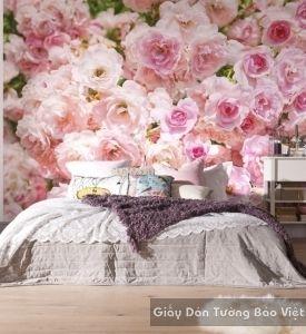 Giấy dán tường phòng ngủ k13792301