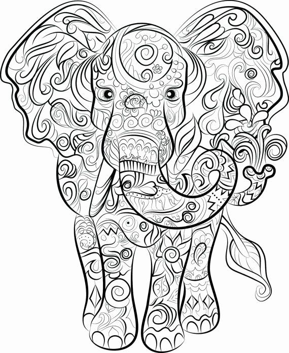 Coloring Pages for Adults Elephant in 2020 | Elephant ...