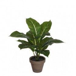 Planta decor H30 cm