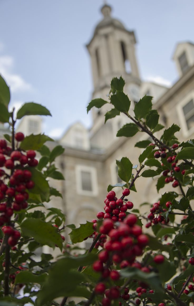 A berry festive look at Old Main.