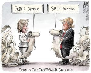 A roundup of funny and provocative cartoons by the nation's top cartoonists.: Experienced Candidates