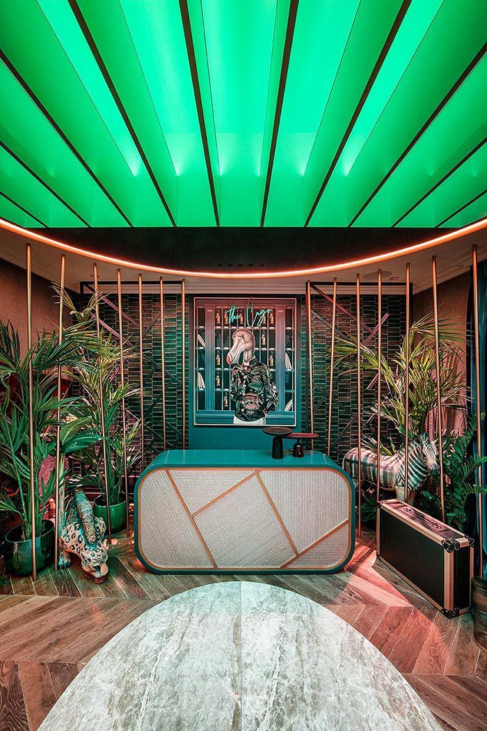Entrada Tropical Techo Verde Luz Gira Y Ele Room 62 Casa Decor