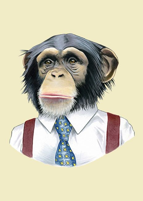 Chimpanzee art print 5x7 by berkleyillustration on Etsy