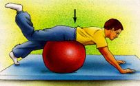 Low Back Pain Exercise Guide -OrthoInfo - AAOS