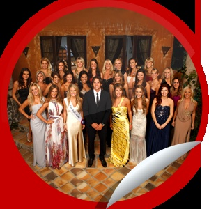 This is the Bachelor Season 16 Fan sticker. Yes I am a Bachelor fan. It's my guilty pleasure.