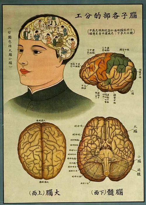 A Paper Bear Art Journal Tumblr   mastercontrol: Vintage Chinese Public Health...