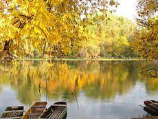 Tőserdő, Bács-Kiskun megye, Magyarország
