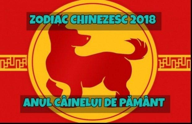 2018 Zodia Cainelui in Zodiacul Chinezesc  Personalitatea Banii Munca Afacerile