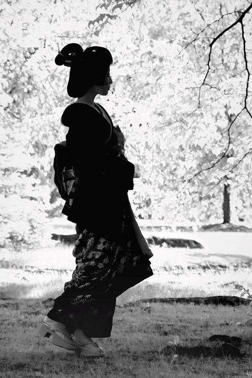 geisha-kai: Geiko Kimiha in black and white (SOURCE)