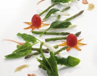 http://gotowanie.onet.pl/przepisy/salatka-z-bialych-i-zielonych-szparagow-z-pomidorami-swiezym-szpinakiem-i-oliwa-z-oliwek,105098.html#pn=gotowanie