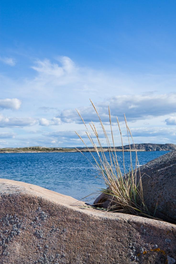 Swedish west coast.