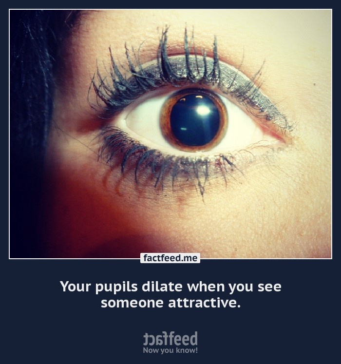 Your pupils dilate... Makeup, Pupil, Facts