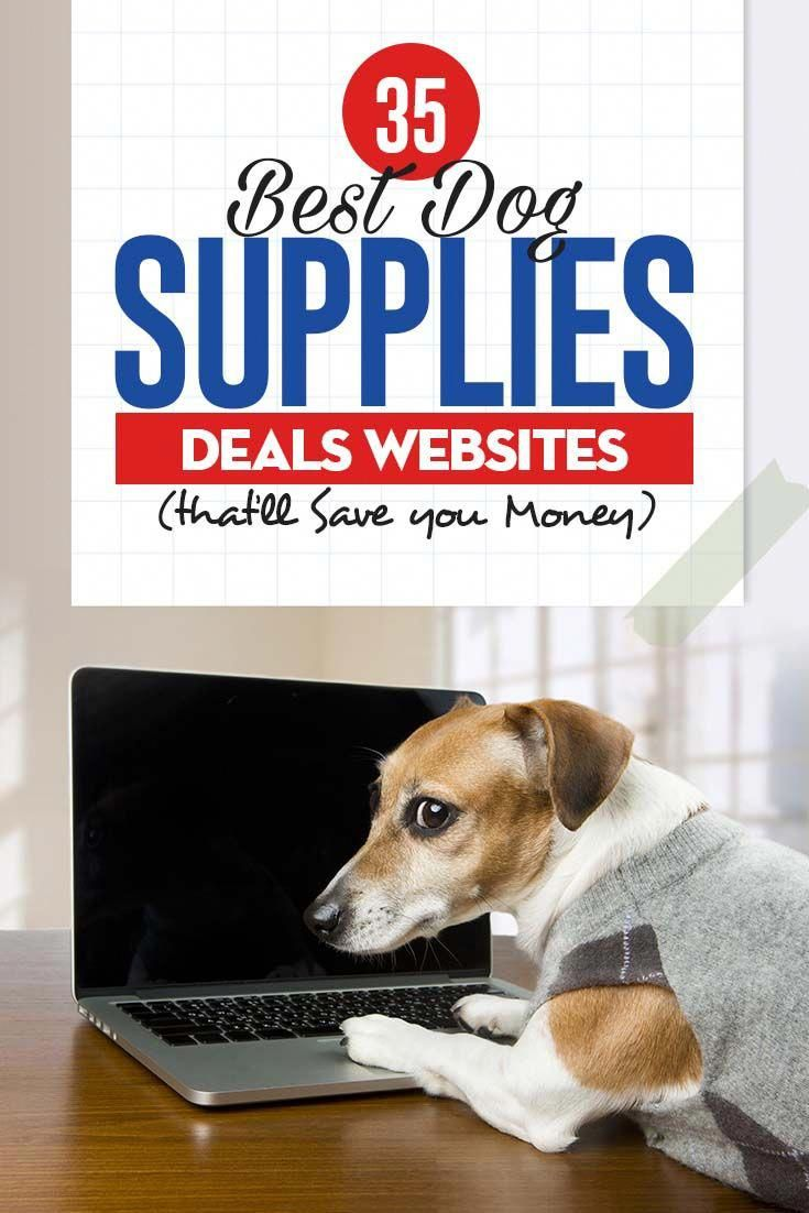 Nippy Dogs Funny Doginaute Dogsdrawing Dog Supplies Online