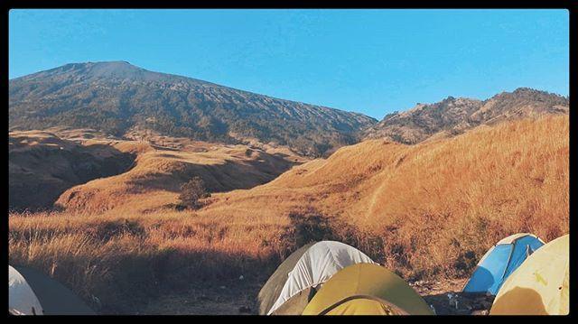 Pemberhentian favorit saya saat memulai pendakian Gunung Rinjani adalah Pos 2 Sembalun.  Area untuk membangun tenda yang luas tersedia sumber air walau harus disaring dan pastinya pemandangan yang sangat cantik.  #Blohisme  #ngaku2traveler  #folkscenery  #passportready  #theimaged