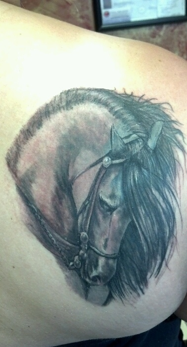 Horse cover up by one mr aaron beaudette out of eternal for Eternal tattoo fremont