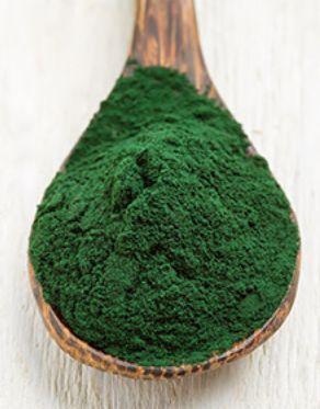 Alga espirulina: mejora la flora bacteriana, depura el organismo, ayuda a adelgazar y a retrasar el envejecimiento ecoagricultor.com
